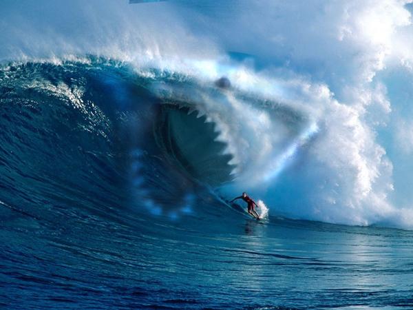 Le Blog De Destination Surf
