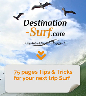 Free Guide: How to prepare Surf Trip ?